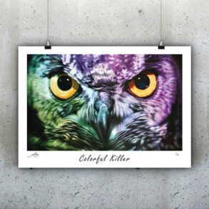 plakat-kunstplakat-farverig-plakat-50x70-plakater
