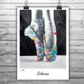flot ballet sko plakat i farver