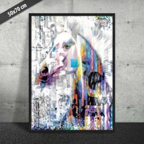 Plakat med hvid hest