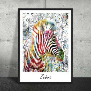 Plakat med farverig zebra