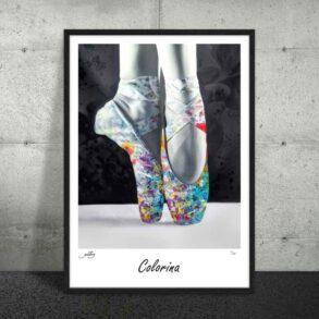 Plakat af balletsko